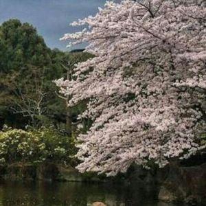 平城宫旅游景点攻略图