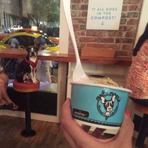 Molly Moon's Homemade Ice Cream旅游景点攻略图