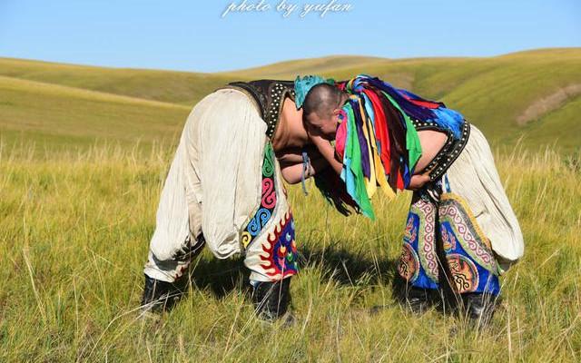 原滋原味的蒙古民间搏克,只属于草原勇士的游戏