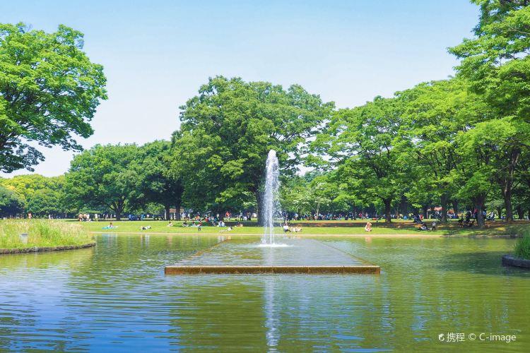 代代木公園2