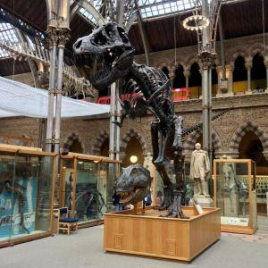 皮特·里弗斯博物馆旅游景点攻略图