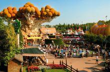 意大利没有迪士尼和欢乐谷,但是有它,带给你同样的刺激和心跳!