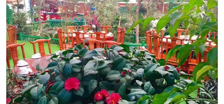 春滿園生態農莊2