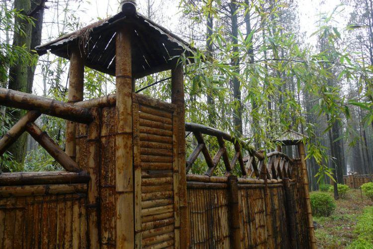 Hongze Lake Wetland and Hot Spring Resort1