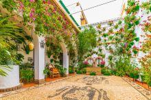 科尔多瓦:鲜花小镇的庄重和小清新