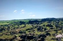 垦丁龙坑保护区