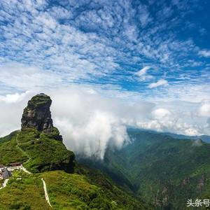 印江游记图文-梵天净土的洗肺之旅:梵净山,亚木沟植物赏