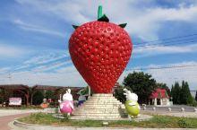 白兔镇草莓广场