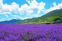 七月,四川这几个地方,即将迎来最美季节!约吗?