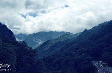 坐天下索道登太白山天圆地方,可惜那天山顶雾大风大还下雨,能见
