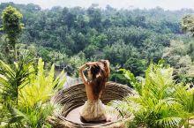 田园慢节奏,探索巴厘岛网红密境