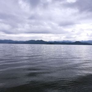 猪槽船游湖(大落水码头)旅游景点攻略图