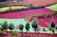 壮美的东川红土地