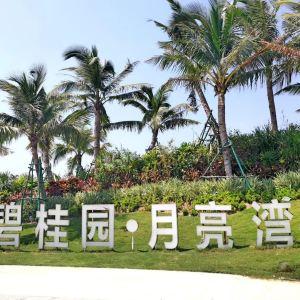 月亮湾滨海度假区旅游景点攻略图