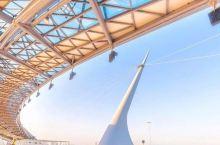 世界最长跨海大桥!港珠澳大桥开通~盘点惊艳世人眼光的著名大桥
