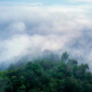 苏门答腊游记图文-航拍苏门答腊岛万年原始森林,朱丹《丹行线》中的最美印尼自然风情!