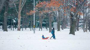 Hokkaido,Recommendations