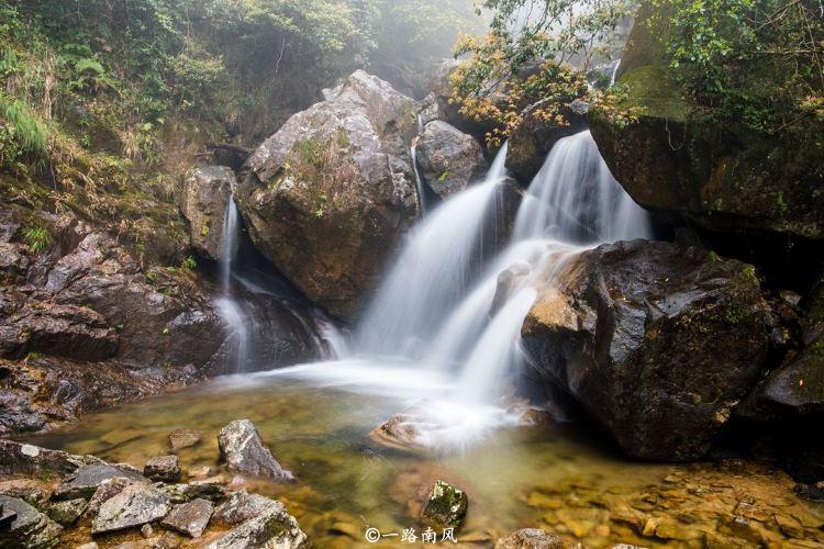 莽山國家森林公園1