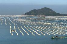 牡蛎养殖基地
