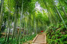 蜀南竹海迷人的不仅是竹景,美食同样不负盛名。