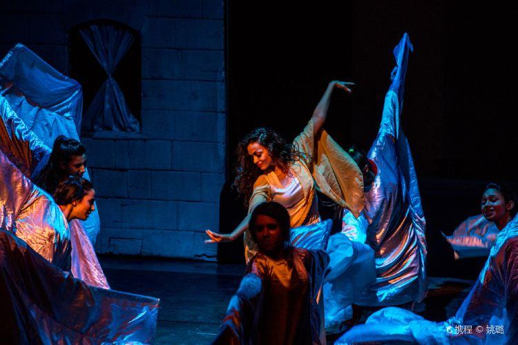 大馬士革歌劇院3