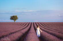 『 南法 』梦幻海岸与紫色薰衣草的追光之旅(蔚蓝海岸自驾攻略与南法薰衣草拍摄攻略)