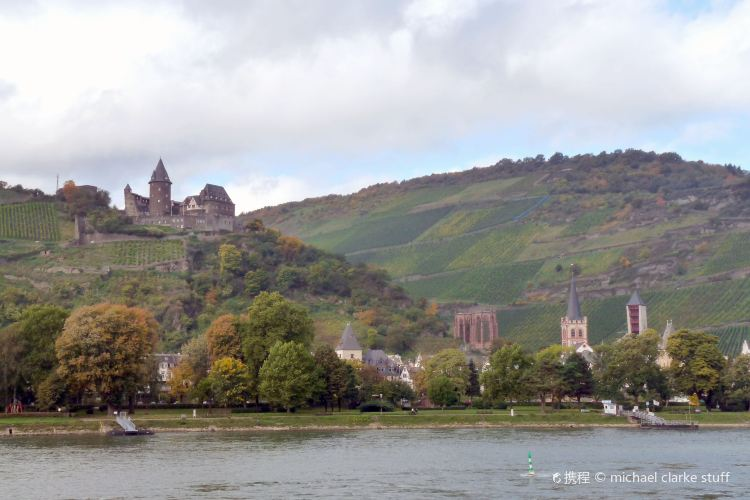 Upper Middle Rhine Valley 2