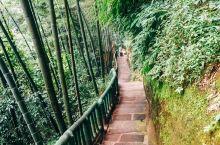 天宝寨和仙寓洞这两个景点,是由一个山头串联而成的,沿路上山下山,就能一一通过并观赏不同角度的风光。