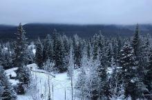 滑雪爱好者不得不到的Alyeska Resort阿尔耶斯卡度假村  #信息# 地址:1000 Arl