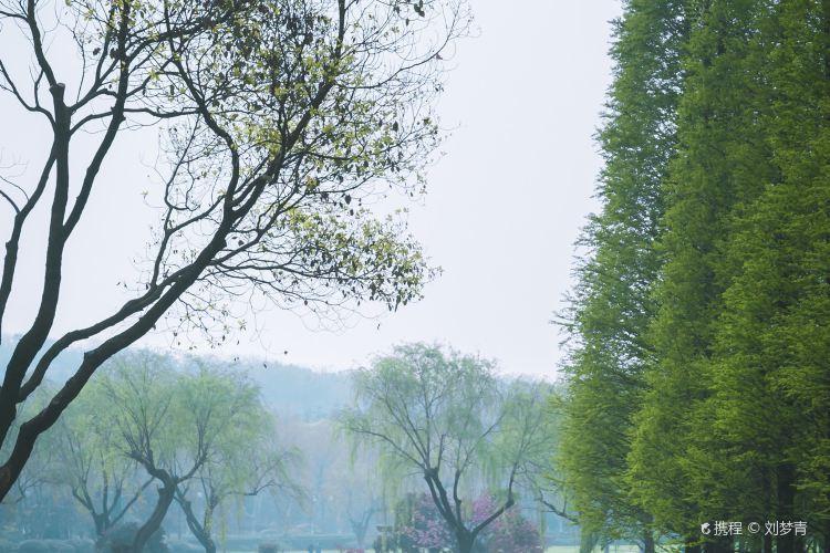 Longbeishan Forest Park3