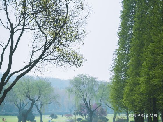 Longbeishan Forest Park