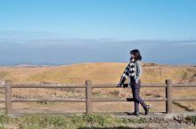 自然、美食与慢生活,九州南部的休闲之旅