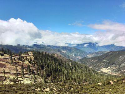 紅拉山滇金絲猴自然保護區