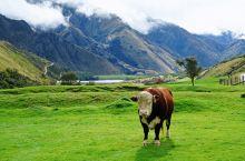 新西兰•皇后镇 Moke Lake