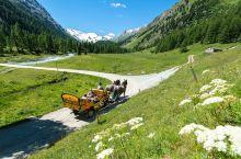 在白色世界里,乘着马车,追逐你儿时的童话梦