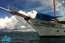 做次小白鼠——鲜有国人尝试的斐济近海巡游
