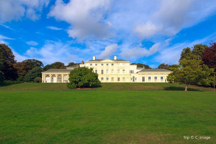Hampstead Heath3