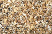 好沙来自于深海