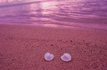 情人节撒粮哪里去,北美这10处✿粉红色浪漫地✿让少女心爆棚!