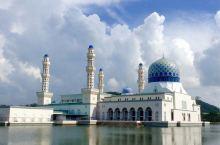 马来西亚的大王花