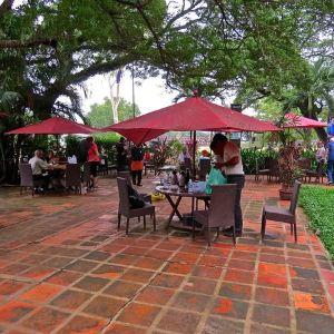 Angkor Wat Cafe旅游景点攻略图