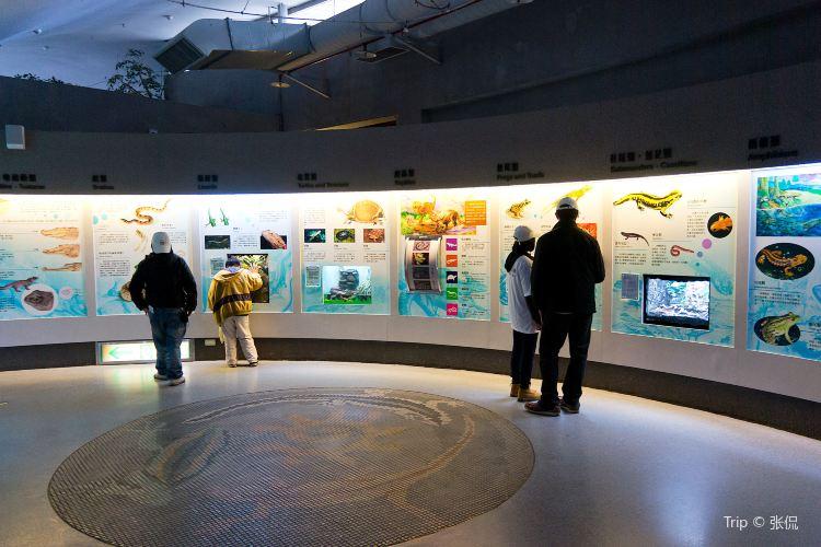 타이베이시립동물원1