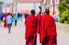 塔尔寺遇僧人遇虔徒