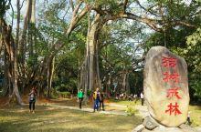 有一个美丽的地方——瑞丽          瑞丽市隶属云南德宏州,是中国西南最大的内陆口岸,是重要的