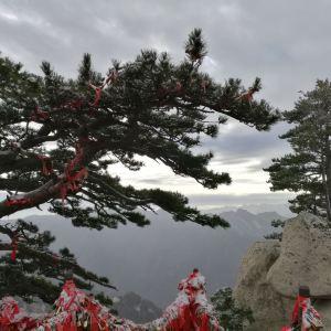 华山旅游景点攻略图