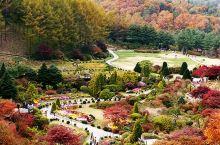人少景美,交通便捷,这里竟然藏着一个首尔的后花园
