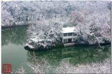 2018年,合肥第一场雪,一场暴雪后的包河景