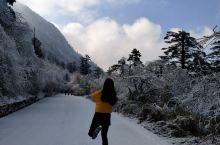 再不去,冬季就过啦 被大雪覆盖的公路 其实很多人会觉得冬季哪里看雪都一样,不,我们不一样,这里有你到