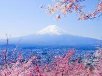 第一次去日本,有哪些注意事項一定要知道?值得收藏!