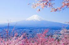 第一次去日本,有哪些注意事项一定要知道?值得收藏!